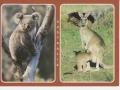 australia-190712-2-pic-jpeg