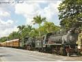 236201168-brasilien-pic
