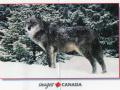kanada-1005-pictureside