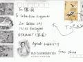 3036412777-china-text