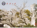 china-hydro-card-jpg