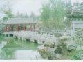 china-multi-pic-jpeg