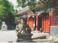 china50486-2-jpg
