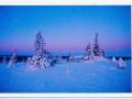 174834-finland-pic-jpg