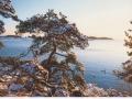 finnland40643-2-jpg