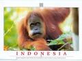 1895-indonesia-pic-jpg