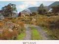 ireland-1195-1-jpg