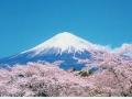 japan78040-2-jpg