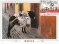 1842726332-mexico-pic
