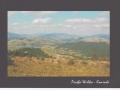 poland-15871-card-jpg